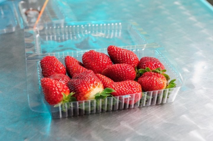 Obligatory pack of strawberry, not knowing whether it's safe (Photo credit: Pravich Vutthisombut)