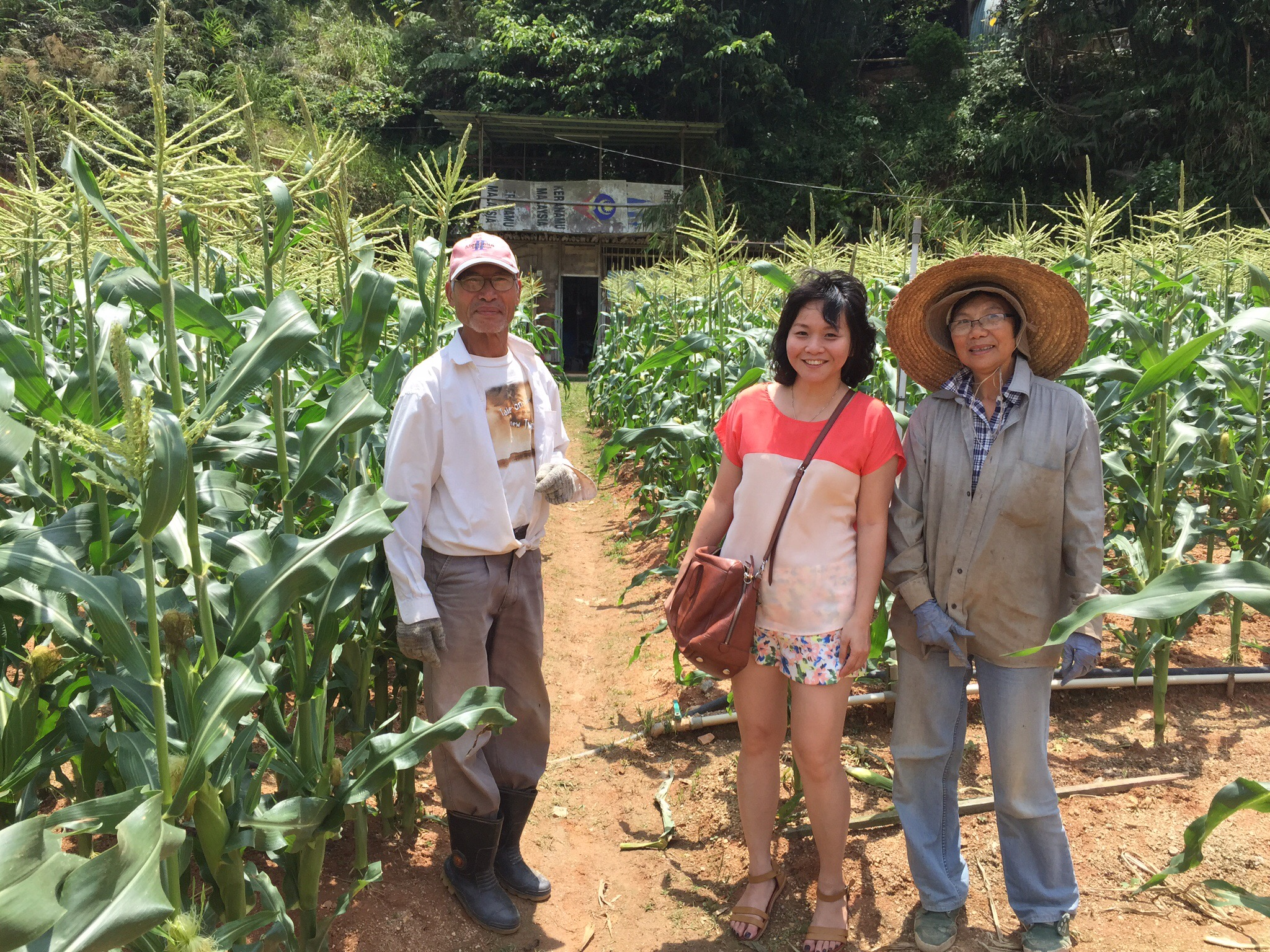 Throwback: A short but memorable 2D1N trip to Cameron Highlands in